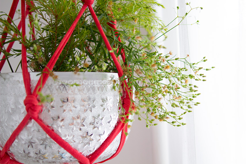 Diy une suspension pour plante - Suspension pour plante ...