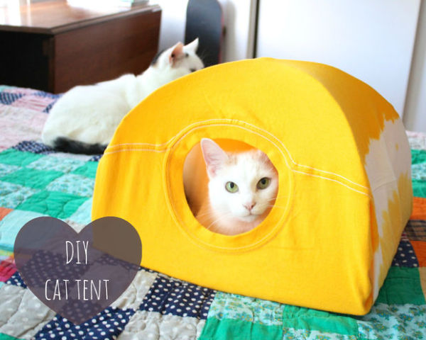 Easy DIY Cat House