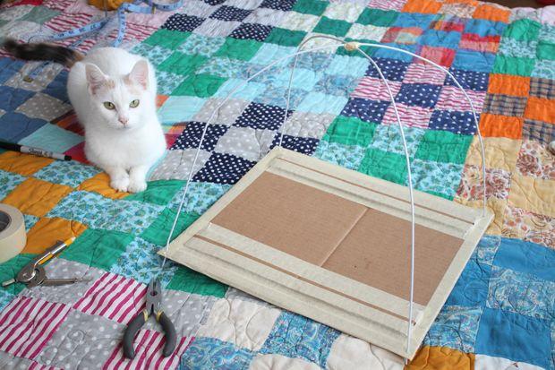 une tente pour chat