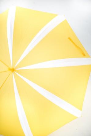 parapluie citron 3
