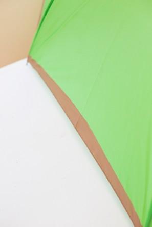 parapluie kiwi 2