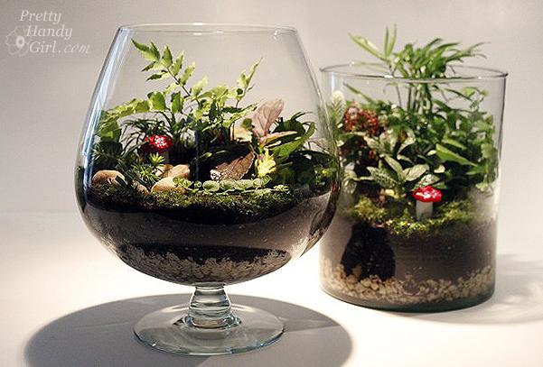 diy un terrarium dans un verre. Black Bedroom Furniture Sets. Home Design Ideas