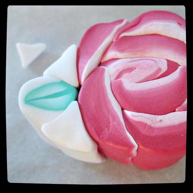 cane rose 20