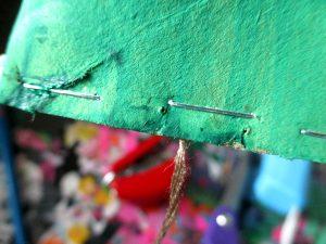 bricolage grenouille en carton